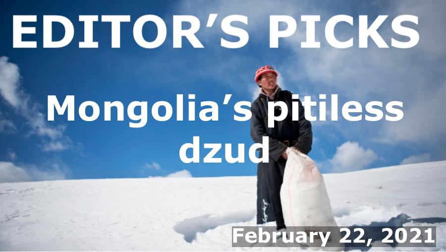 bne IntelliNews Editor's Picks -- Mongolia's pitiless dzud