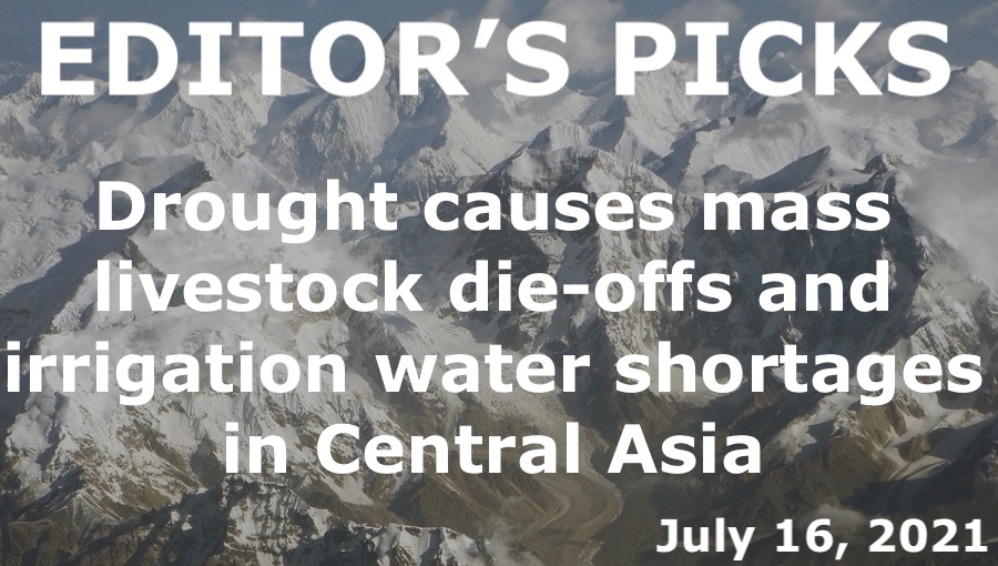 bne IntelliNews Editor's Picks --  bneGREEN: Drought causes mass livestock die-offs and irrigation water shortages in Central Asia