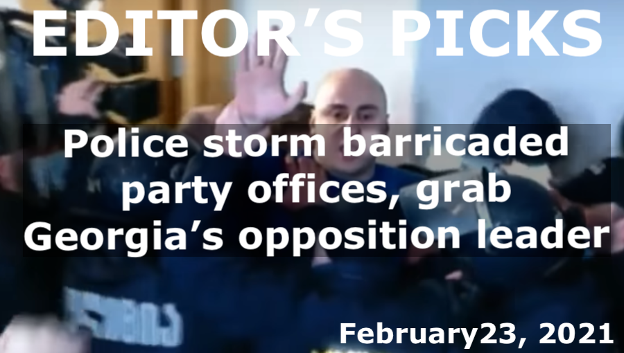 bne IntelliNews Editor's Picks --  Police grab Georgia's opposition leader after storming barricaded party offices