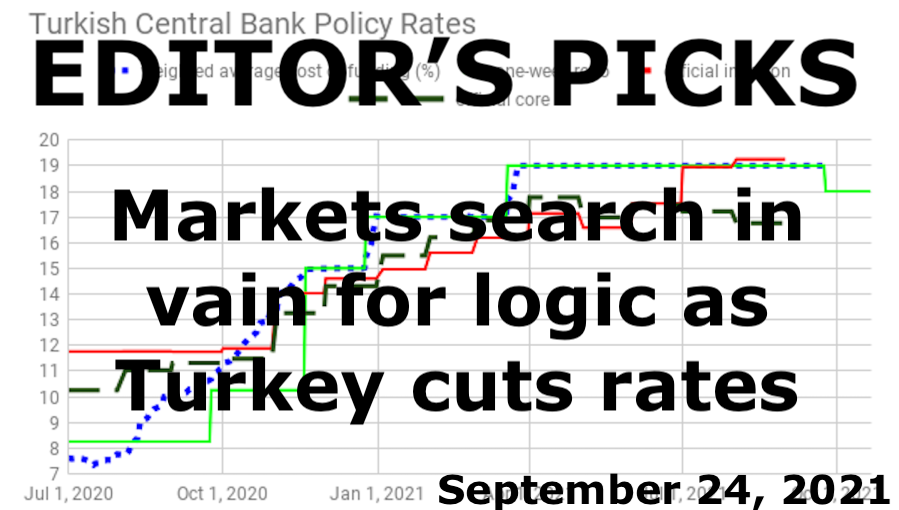 bne IntelliNews Editor's Picks --  ISTANBUL BLOG: Markets search in vain for logic as Turkey cuts rates