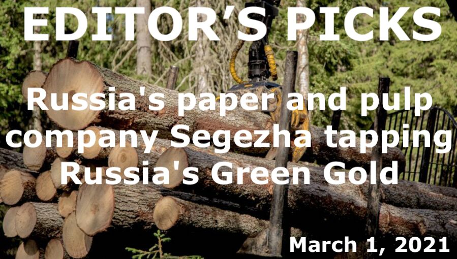 bne IntelliNews Editor's Picks --  Russia's paper and pulp company Segezha is tapping Russia's Green Gold